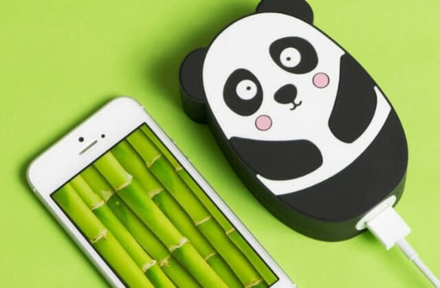 Panda power bank!